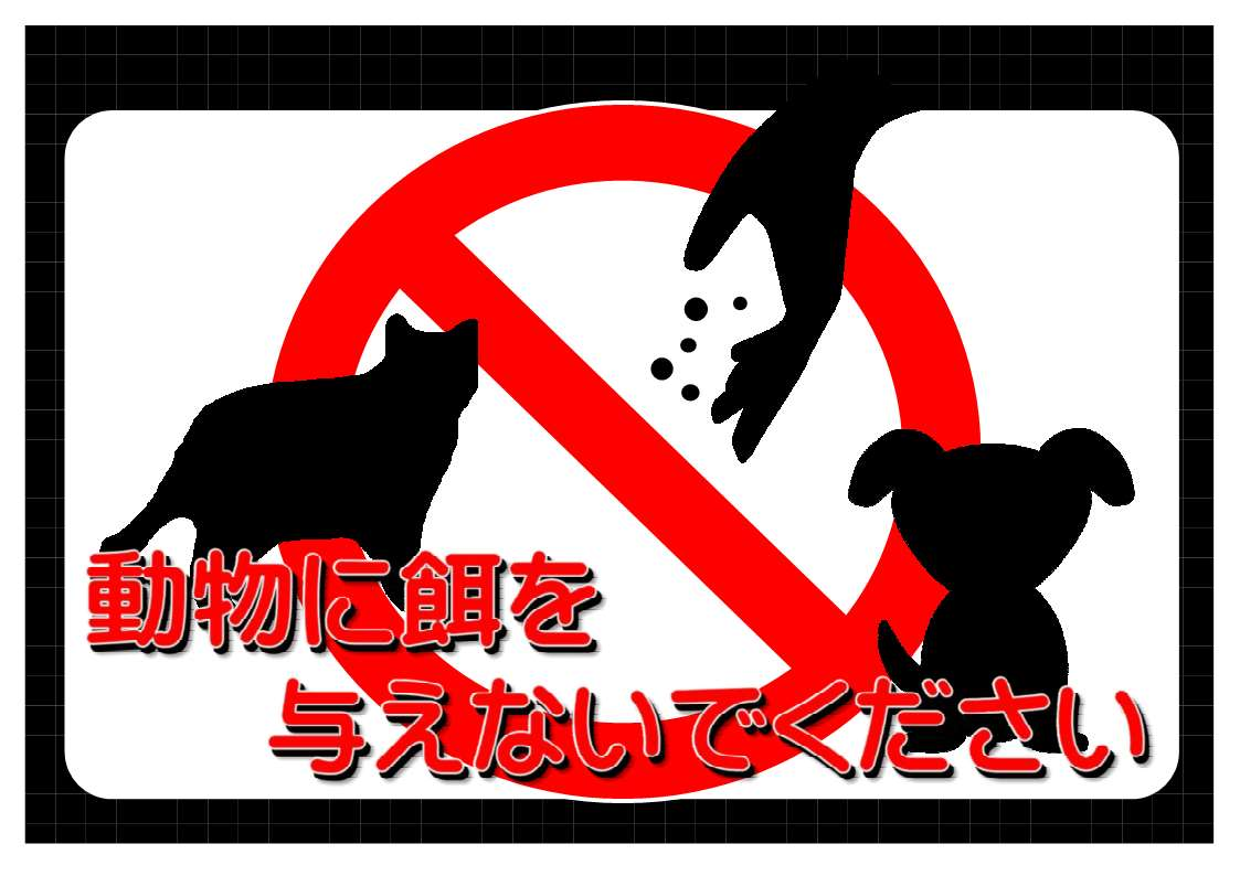イヌ・ネコ・キツネなどへの「餌付け」について/朝日にいちばん近い街